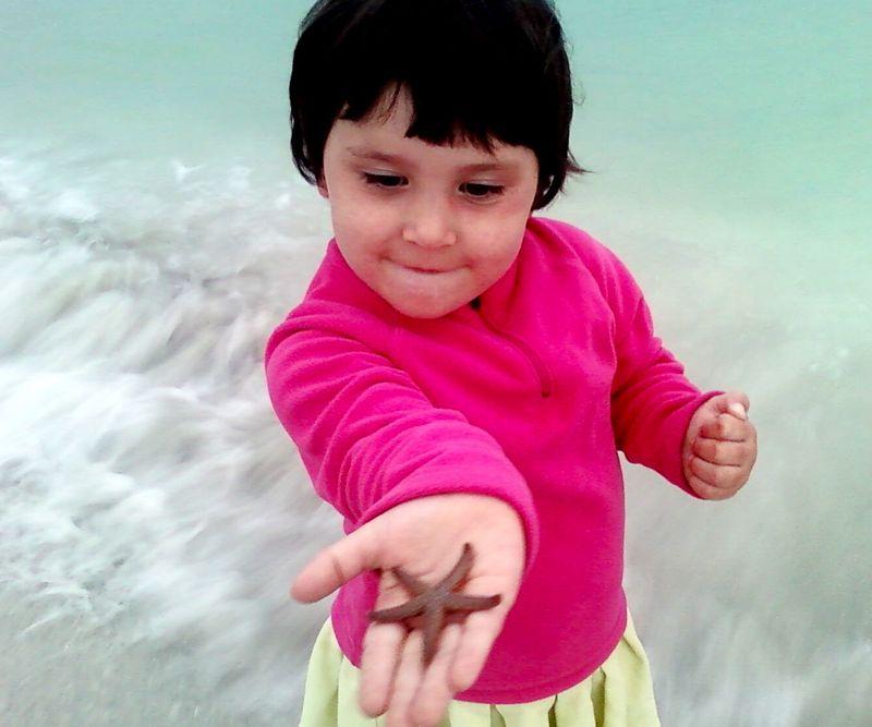 Starfish found in the sea