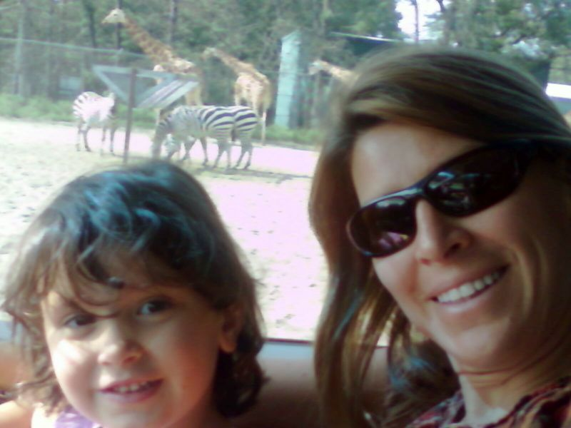 Mom, maya, zebras & giraffe