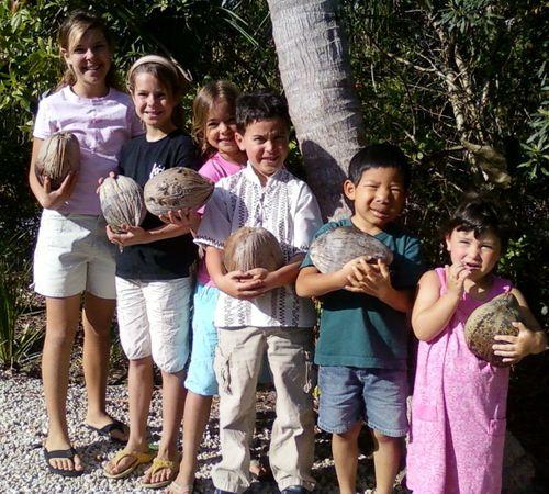 Coconut crew